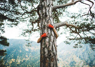 tree-hugger_4460x4460